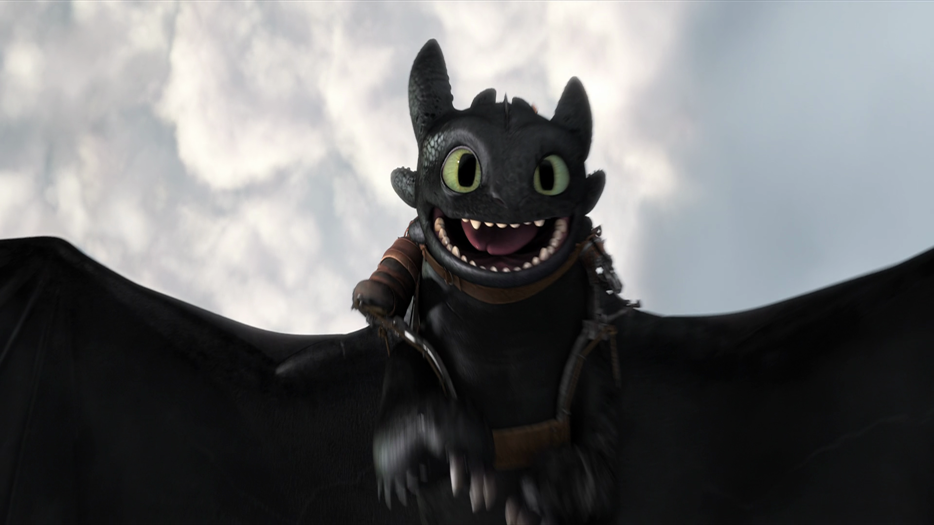 Toothless Wallpaper Hd Train Your Dragon Black Dragon 2581877