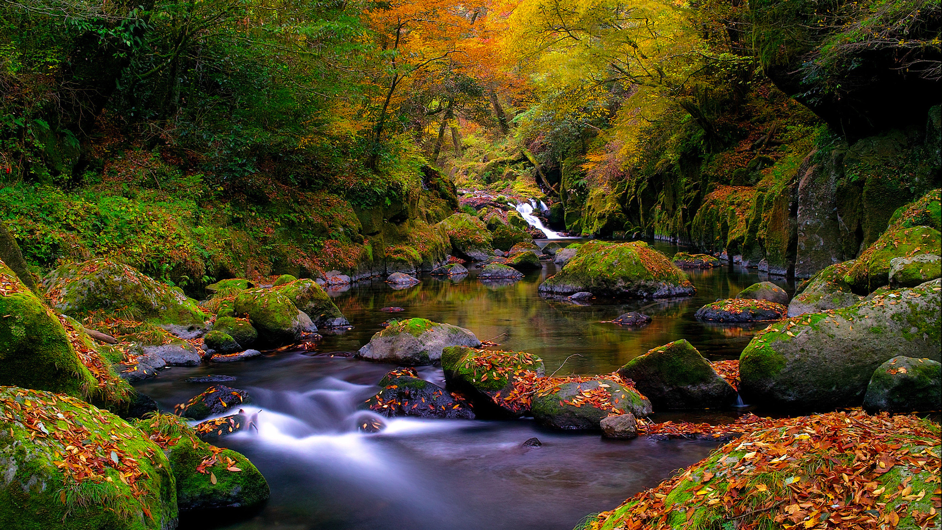 Scenic Image Galleries , HD Wallpaper & Backgrounds