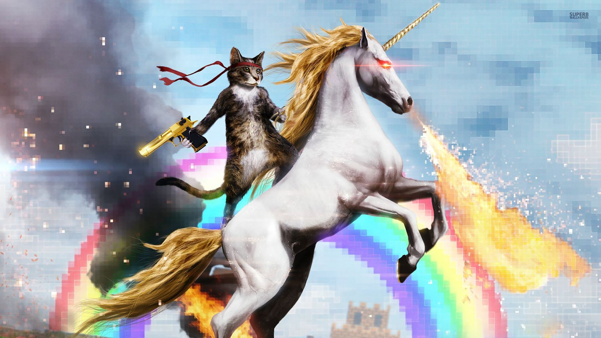 Cat Riding A Fire Breathing Unicorn Google Search Wallpaper Cat Riding A Unicorn 262444 Hd Wallpaper Backgrounds Download