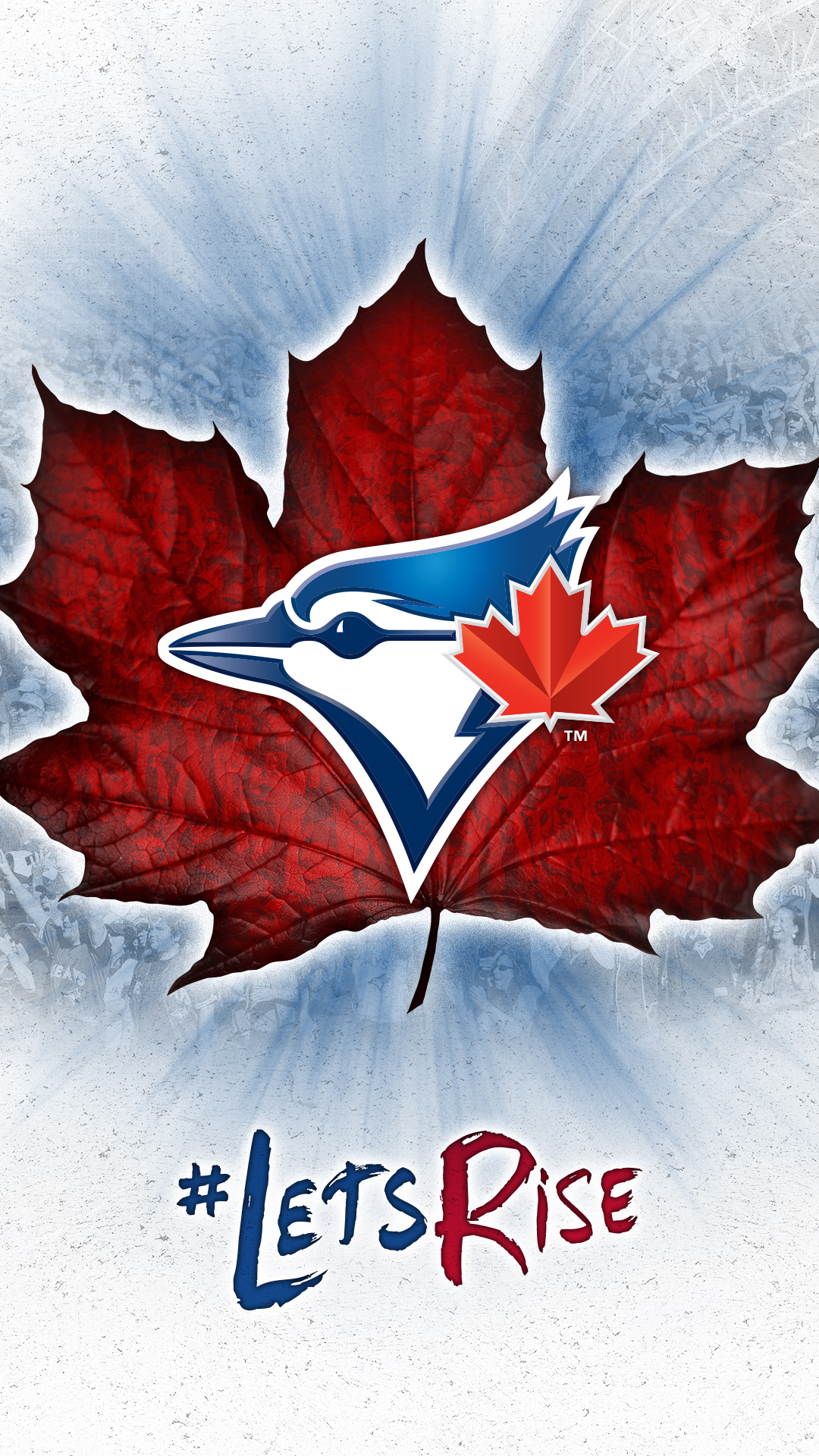 Download Download - Toronto Blue Jays New , HD Wallpaper & Backgrounds