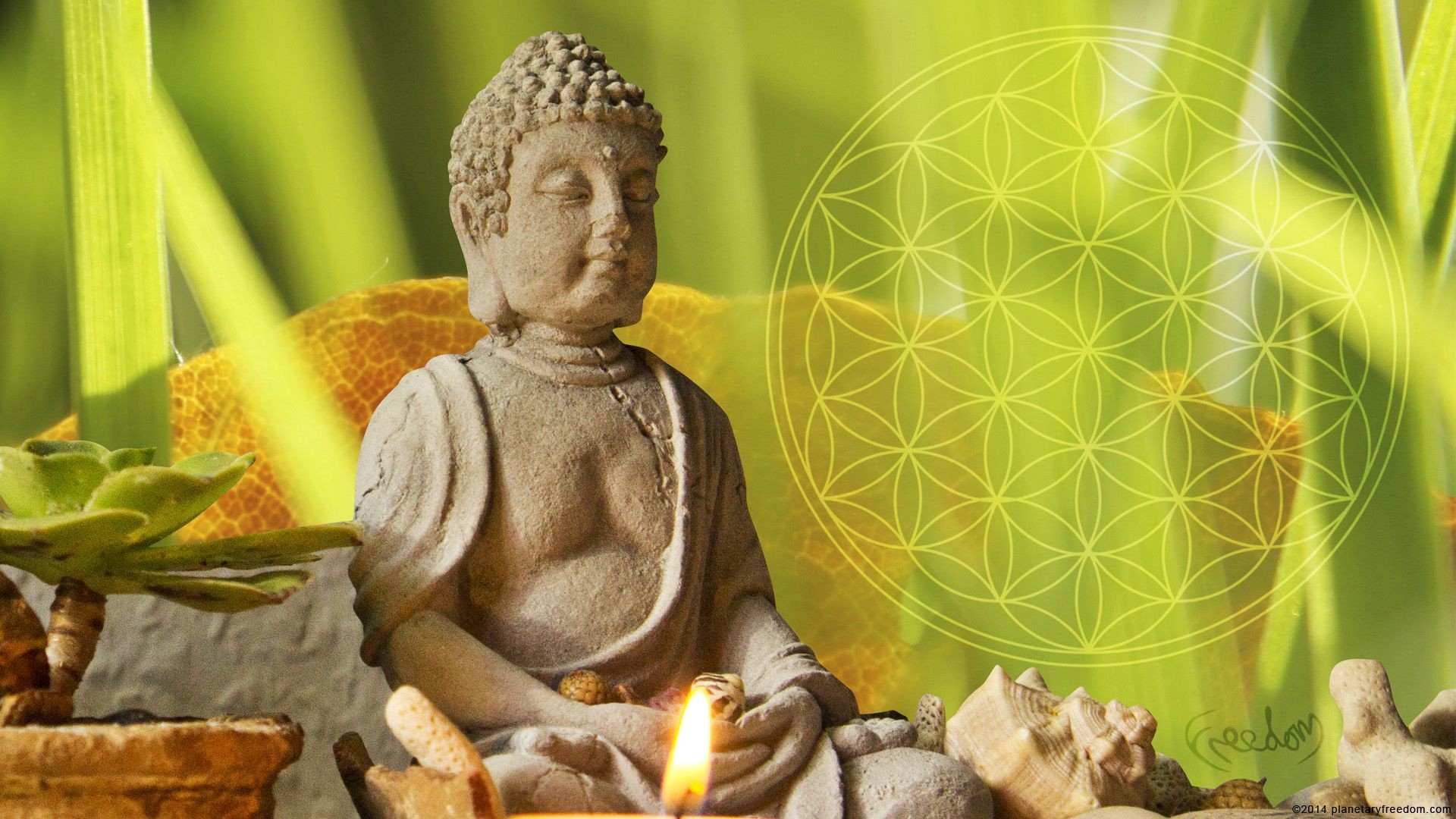 Flower Of Life Buddha 269343 Hd Wallpaper Backgrounds Download