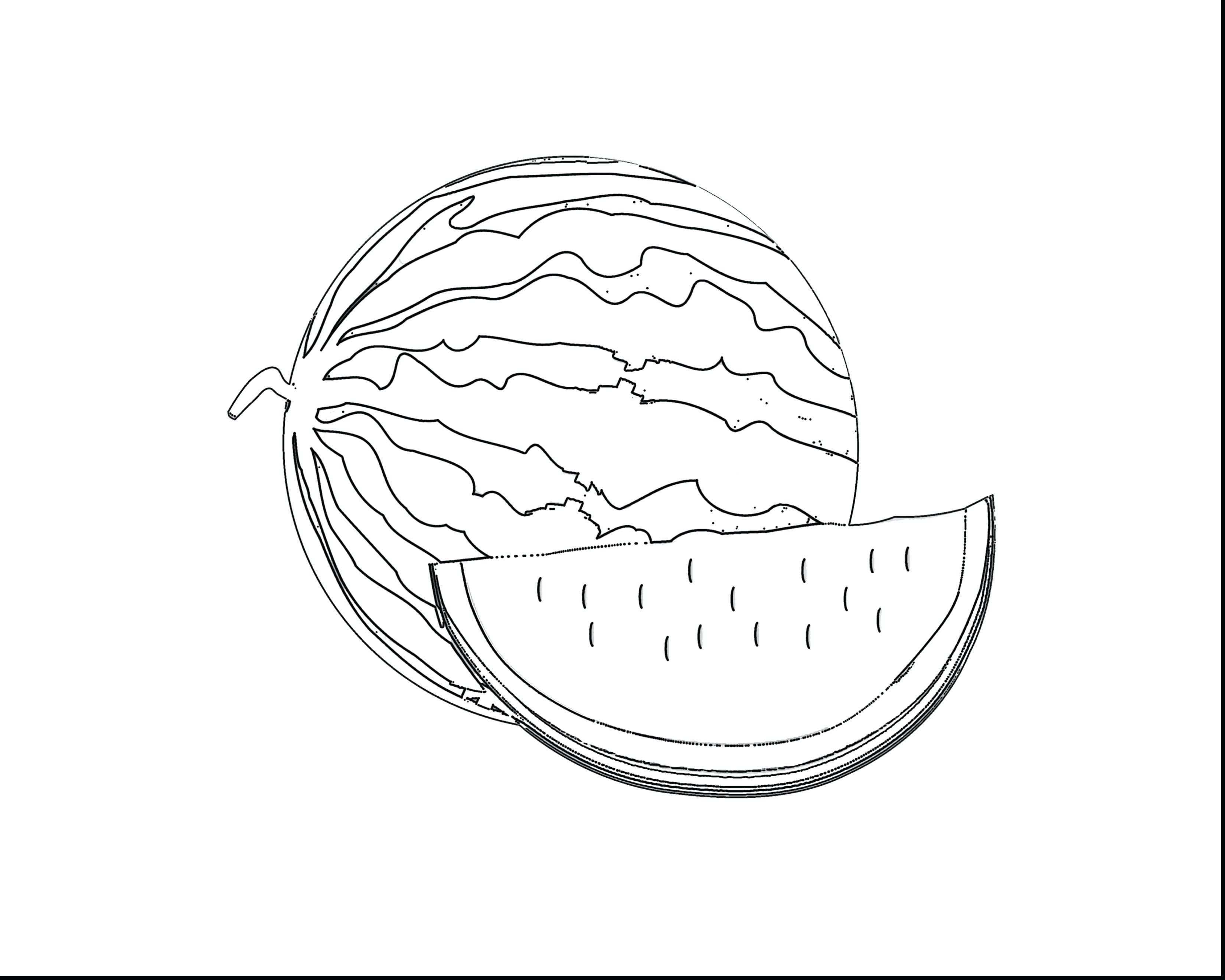 Watermelon Coloring Page With Wallpapers Mayapurjacouture - Coloring Book , HD Wallpaper & Backgrounds