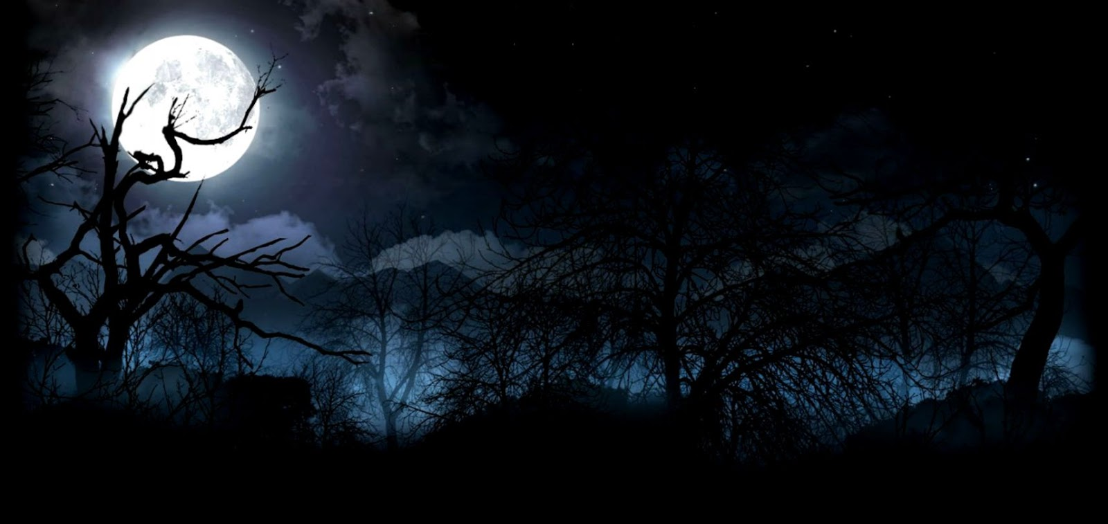 Forest Moon Wallpapers - Horror Moon Background Hd , HD Wallpaper & Backgrounds