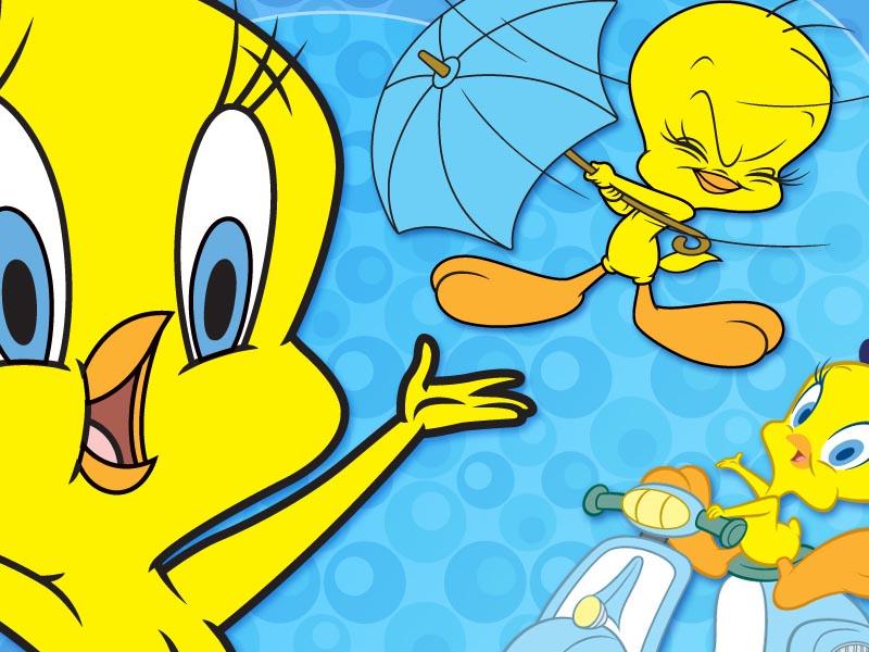 Tweety Bird , HD Wallpaper & Backgrounds