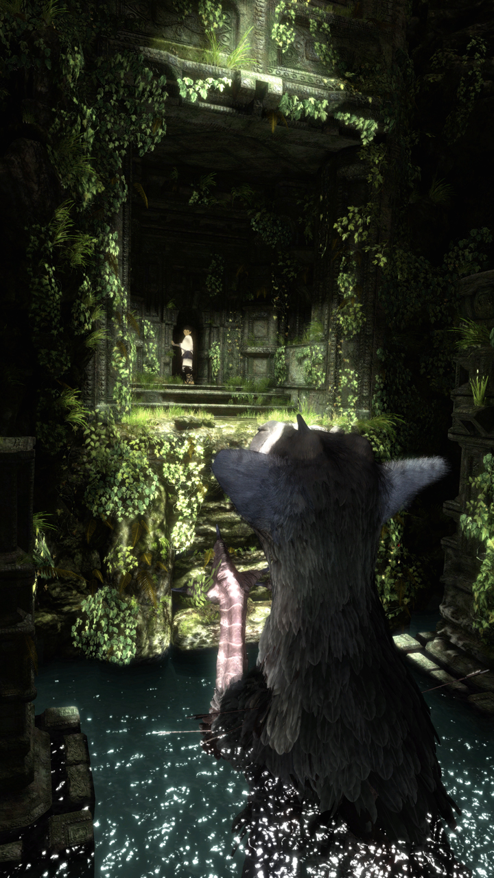 Last Guardian Trico Ref 2624495 Hd Wallpaper Backgrounds