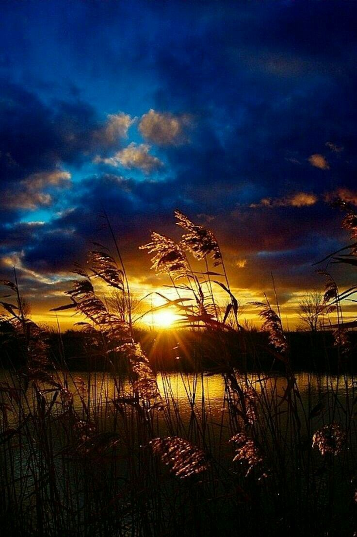 Image Result For Sunrise Wallpaper Hd For Iphone Iphone