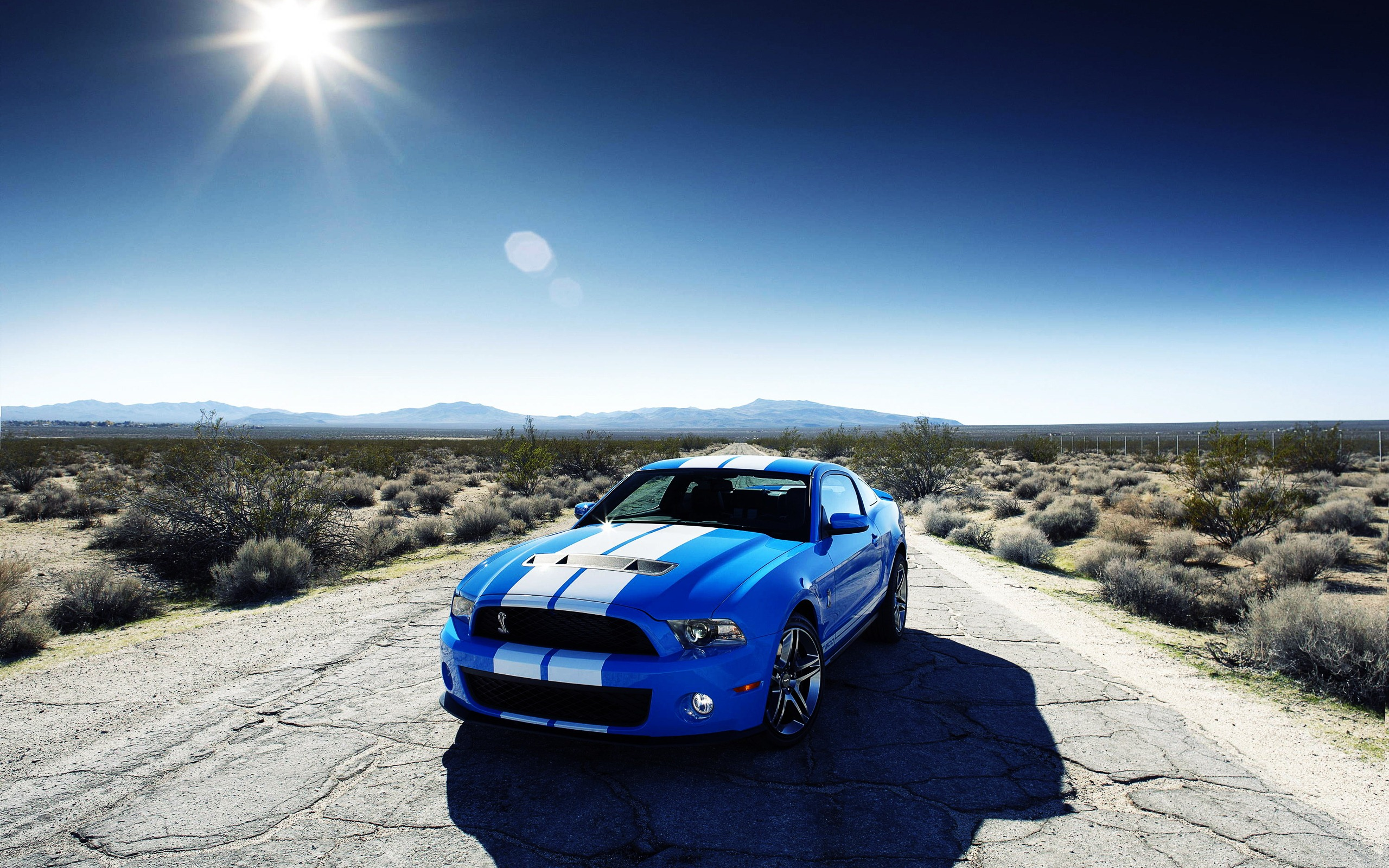 Mustang Wallpapers 1 Mustang Wallpapers 1 2010 Ford 285668