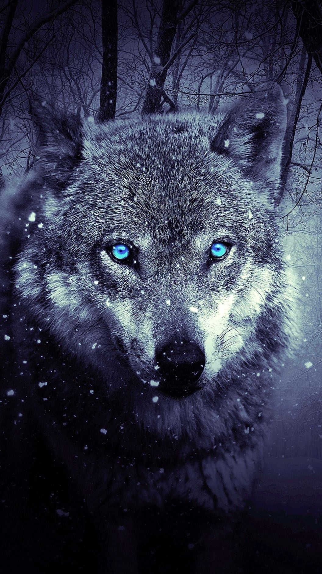 Iphone 6s Wallpapers Hd Wolf Wolf Wallpapers Wolf Wallpaper Iphone Xs Max 2848247 Hd Wallpaper Backgrounds Download
