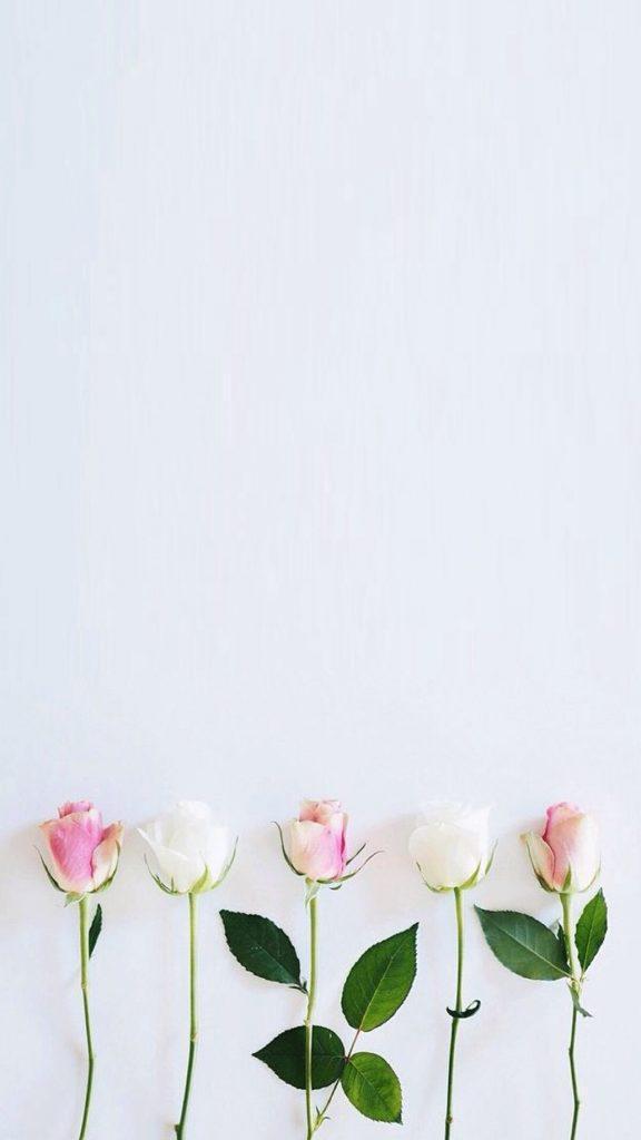 Mobile Wallpaper - Simple Flower Wallpaper Iphone , HD Wallpaper & Backgrounds