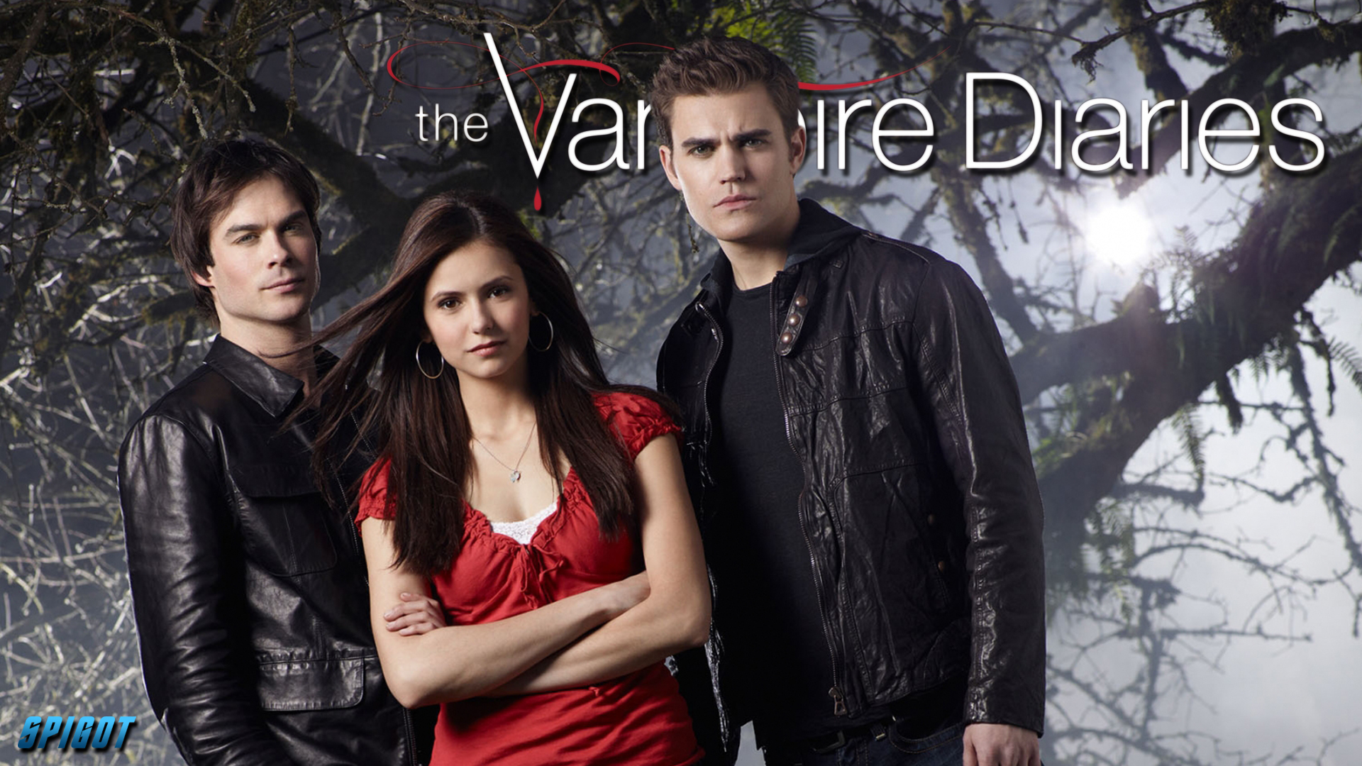 Vampire Diaries Web Series , HD Wallpaper & Backgrounds