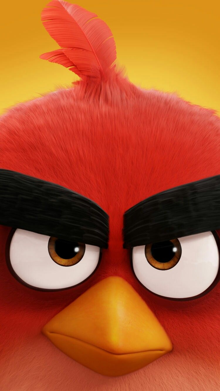 Red Angry Birds , HD Wallpaper & Backgrounds