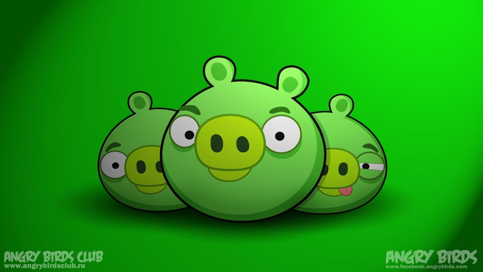 Angry Birds Wallpapers Angry Birds Wallpapers Angry - Angry Birds Pigs Hd , HD Wallpaper & Backgrounds