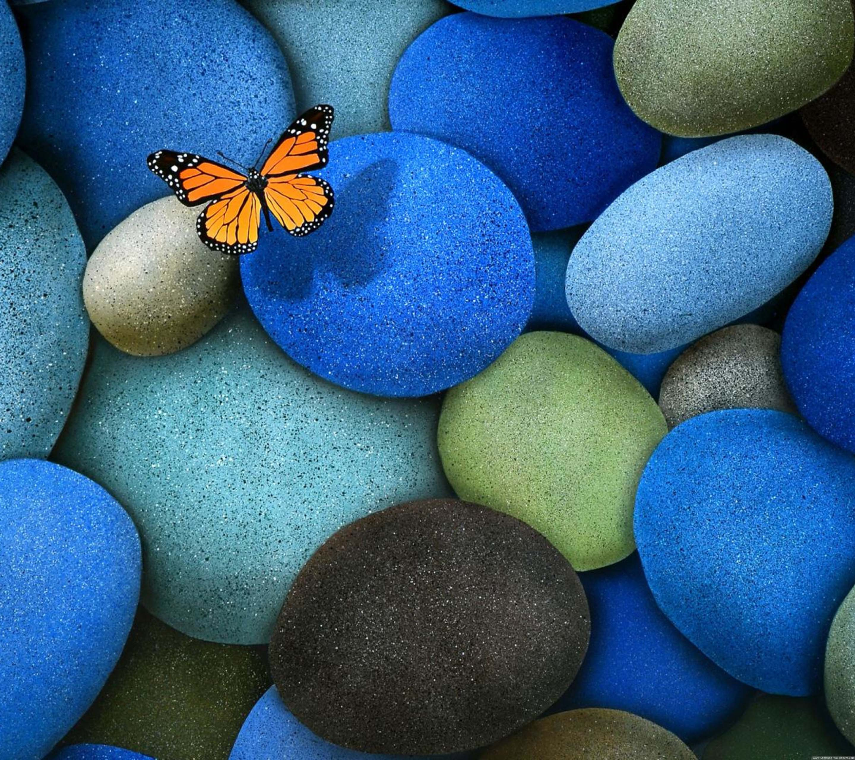 Rocks Butterfly Stock Samsung Galaxy S7 Edge Wallpaper Samsung Galaxy S7 Edge Wallpaper Download 290134 Hd Wallpaper Backgrounds Download