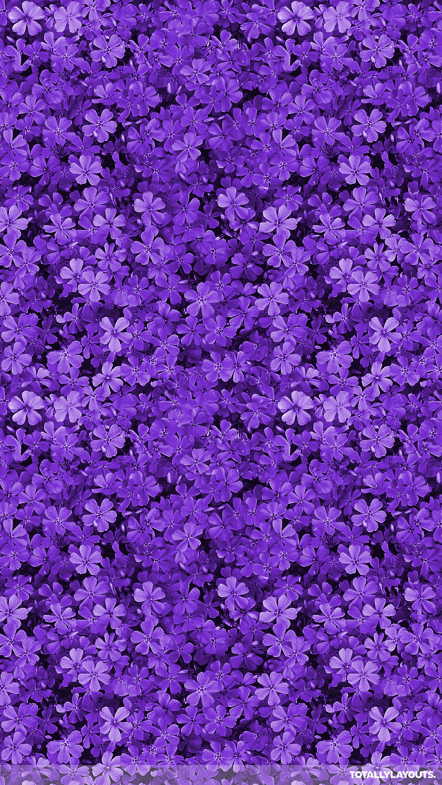 Purple Wallpaper Tumblr Phone Background Purple Flower 296691 Hd Wallpaper Backgrounds Download