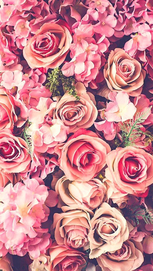 Flowers Wallpaper Tumblr Plus Floral Wallpaper Free Floral