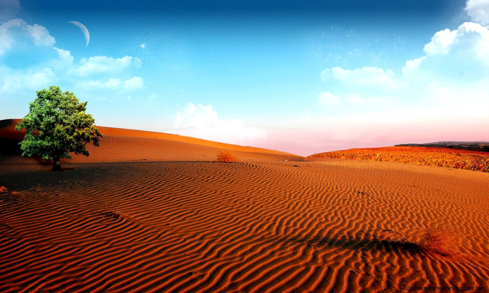 Collection Of Desert Backgrounds Desert High Definition High Resolution Desert Background 2904253 Hd Wallpaper Backgrounds Download