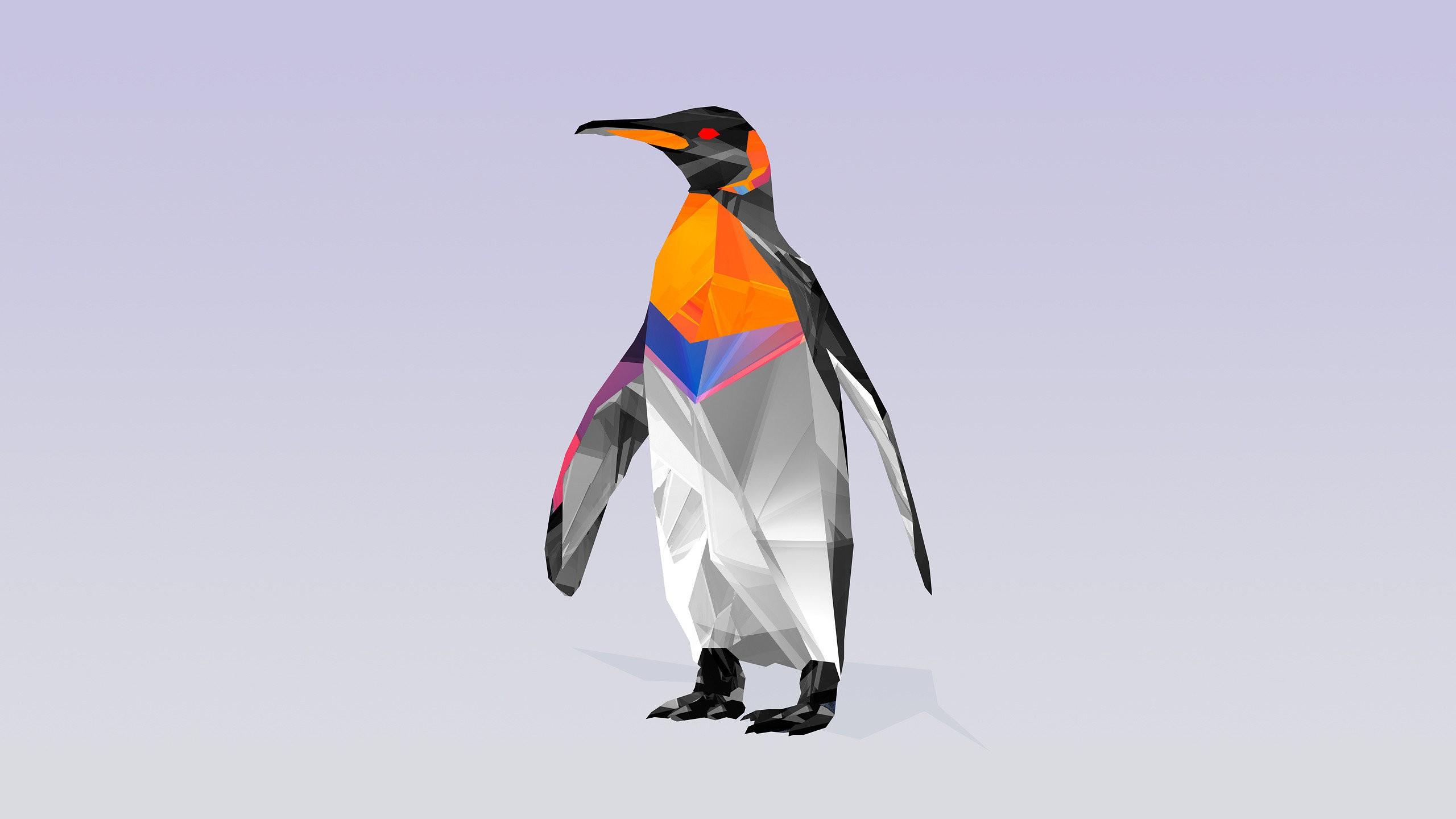 Penguin Wallpaper , HD Wallpaper & Backgrounds