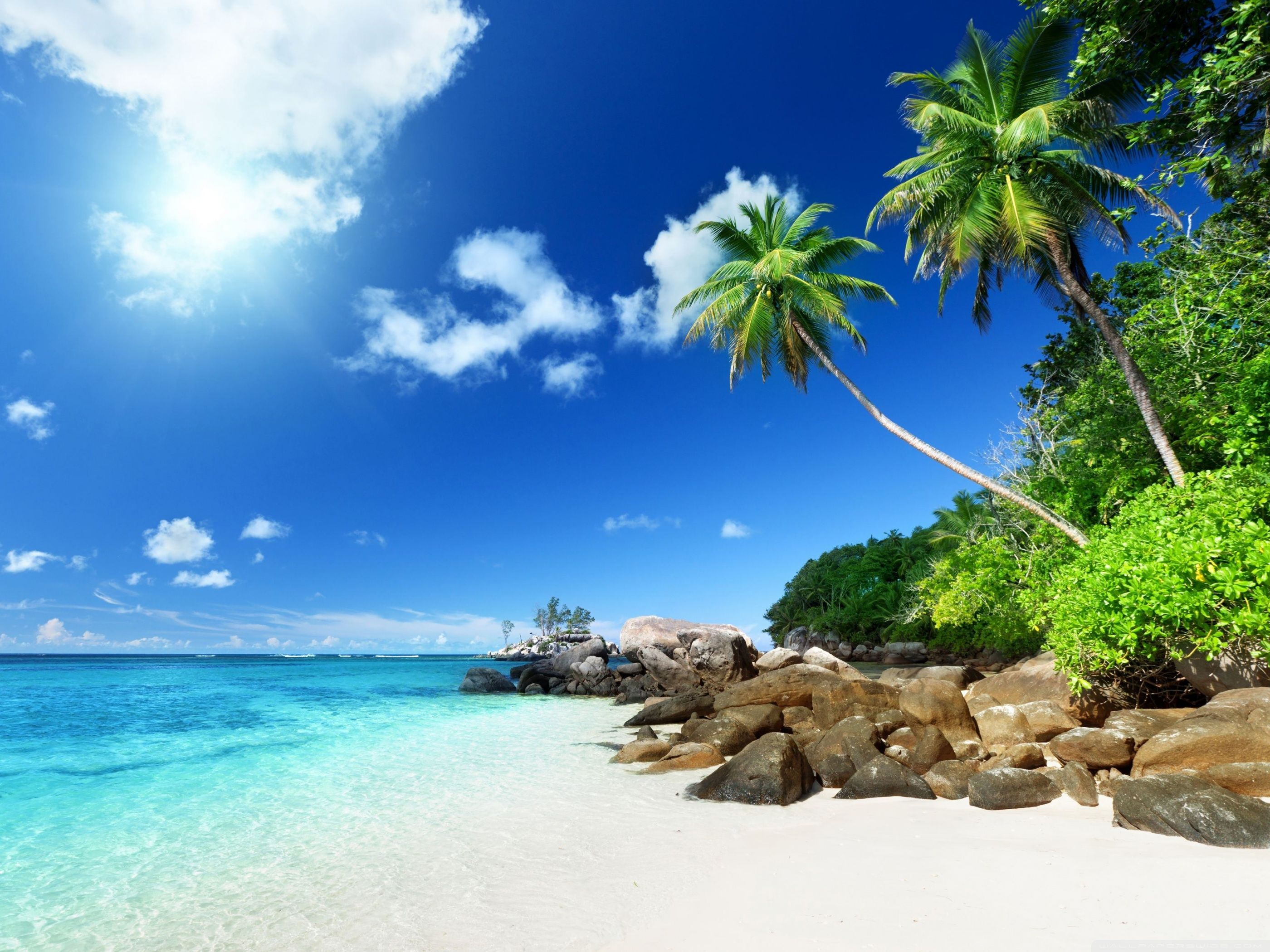 Paradise Beach ❤ 4k Hd Desktop Wallpaper For 4k Ultra - Beach 800 X 600 , HD Wallpaper & Backgrounds