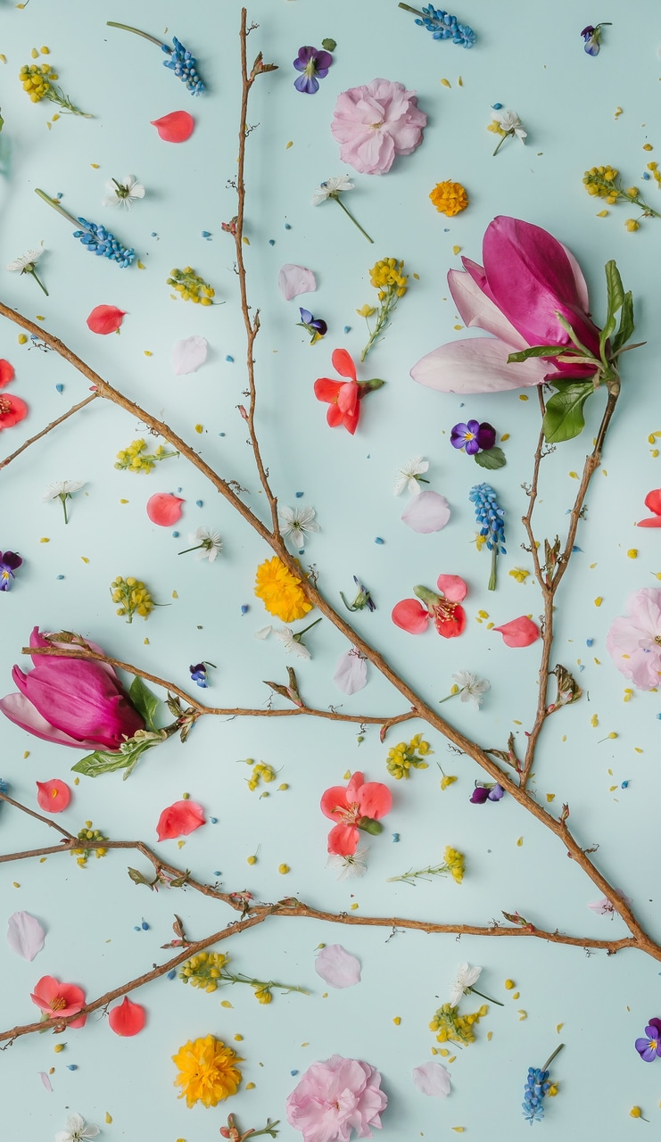 Floral Background Iphone Background Aesthetic Lockscreen Iphone 11 Wallpaper Girly 2946240 Hd Wallpaper Backgrounds Download