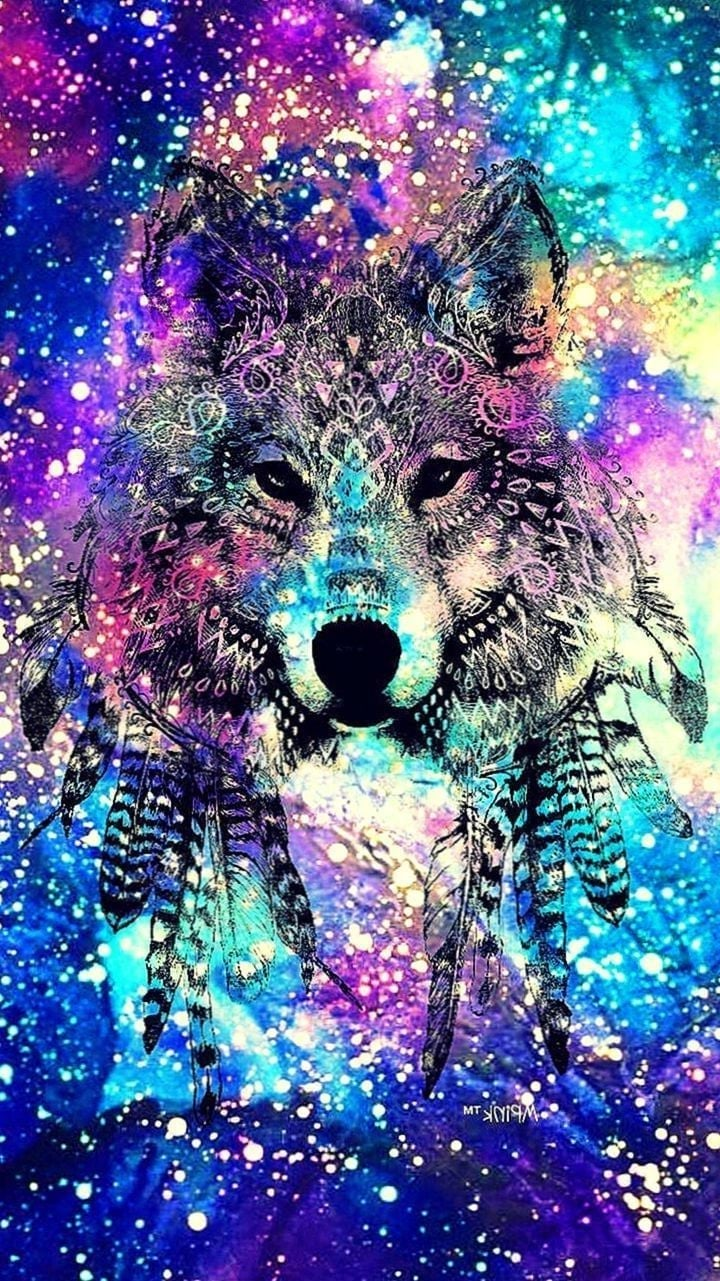Super Cool Wolf Wallpapers Wolves Galaxy 2963589 Hd Wallpaper Backgrounds Download