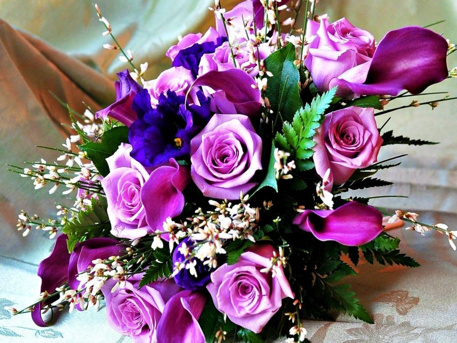 Pink Nature Beauty Flower Beautiful Rose Wallpaper - Beautiful Wallpaper Hd Nature Flower Rose , HD Wallpaper & Backgrounds