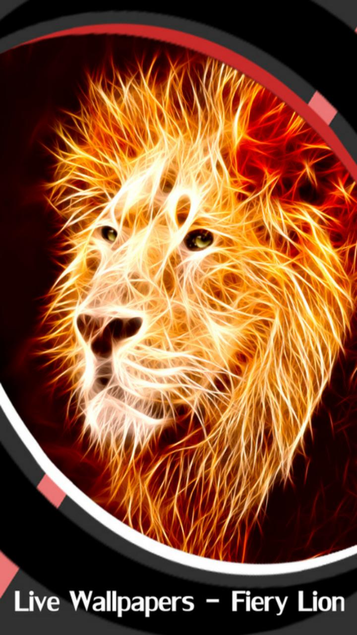 Imagem De Leão , HD Wallpaper & Backgrounds