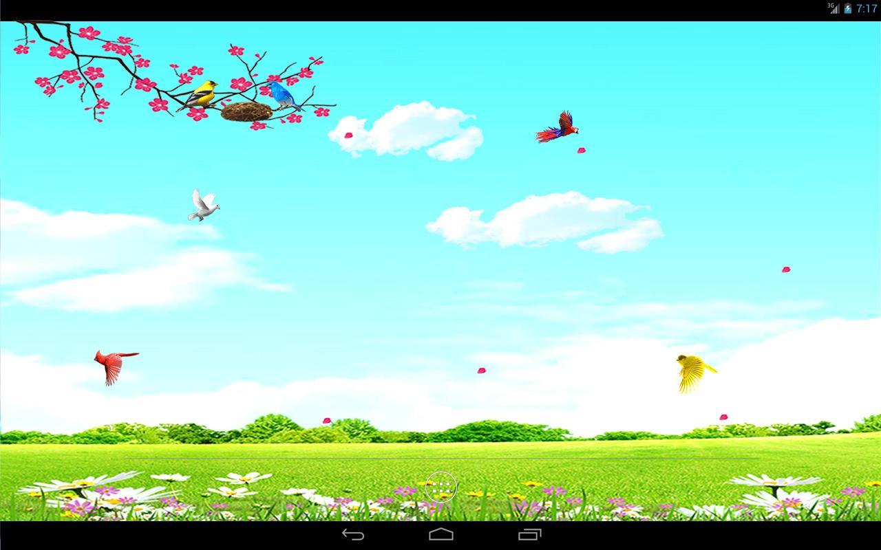 Sky Bird Fly Hd Background , HD Wallpaper & Backgrounds