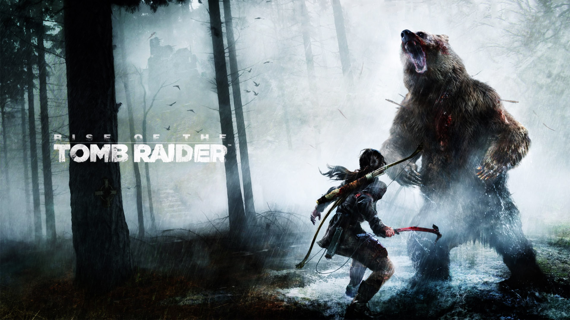 Rise Of The Tomb Raider 20 Year Celebration , HD Wallpaper & Backgrounds