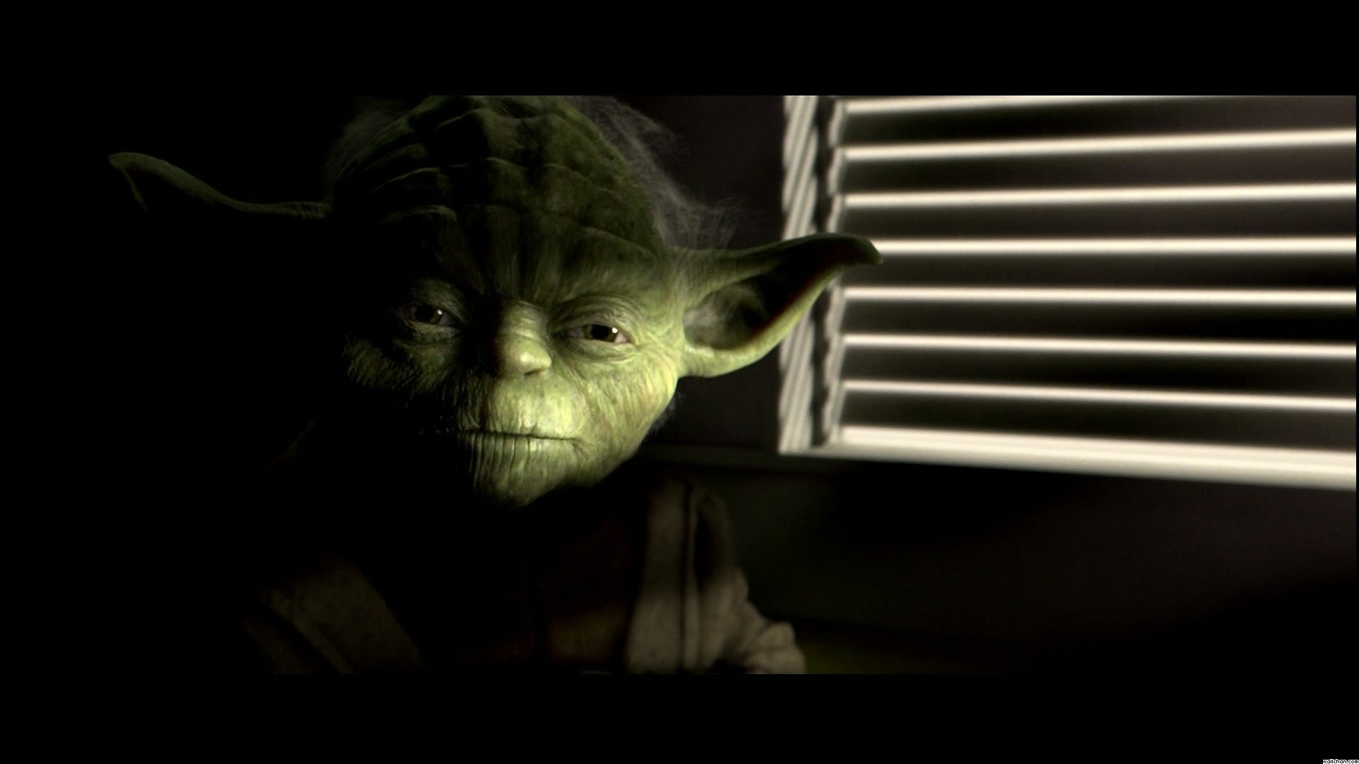 Star Wars Yoda Wallpaper Train Yourself To Let Go Everything Your Fear Of To 2994125 Hd Wallpaper Backgrounds Download