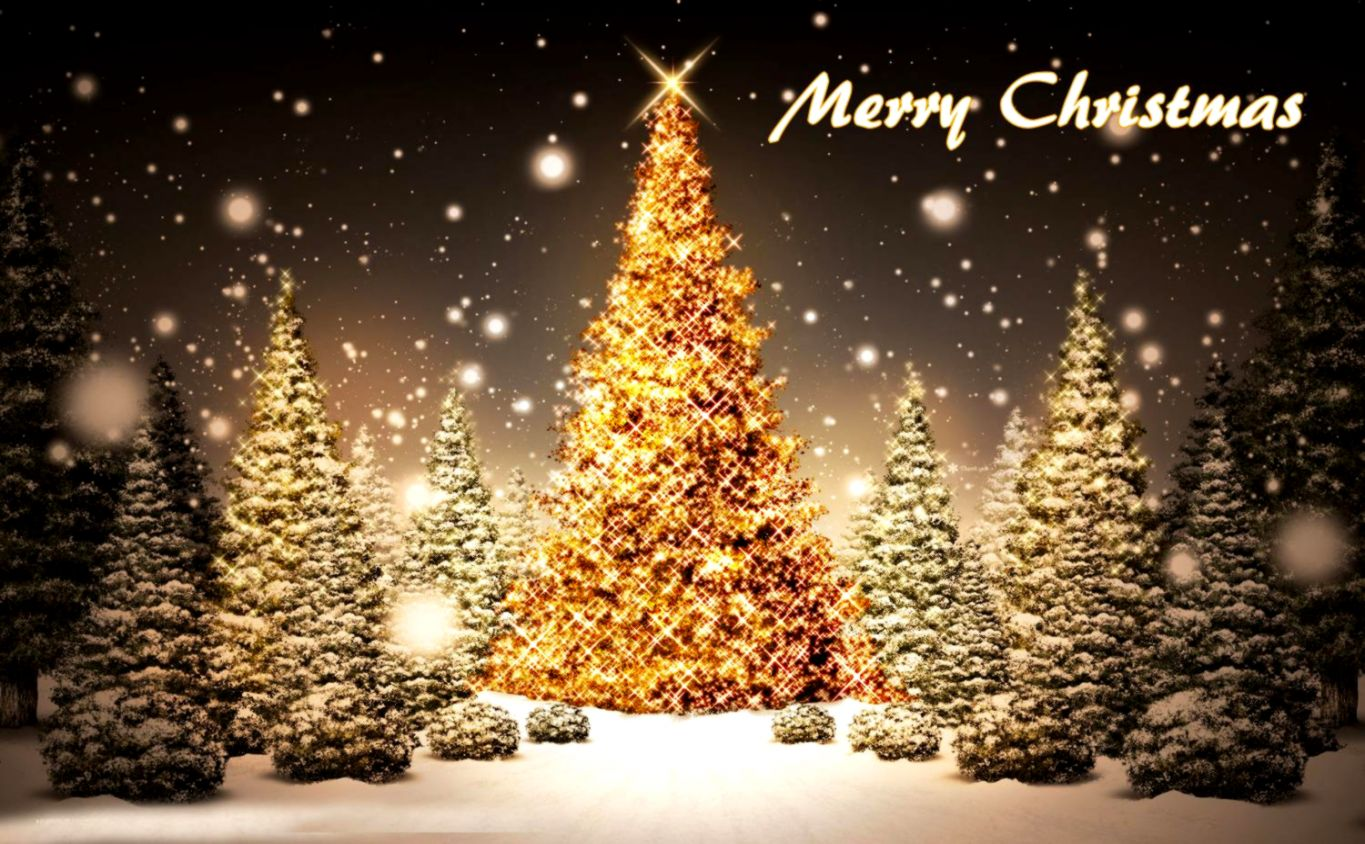 Merry Christmas Tree Wallpaper Best Cool Craft Ideas - Merry Christmas Wallpaper Tree , HD Wallpaper & Backgrounds