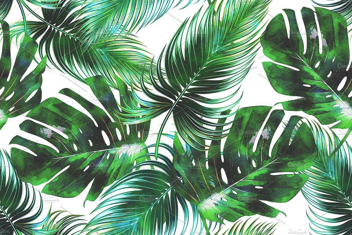 3 30627 watercolor tropical leaves background hd