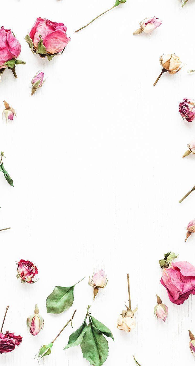Flower Iphone Wallpaper Pinterest May 2018 Calendar