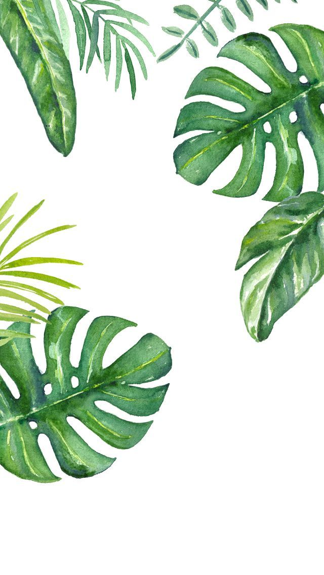 Iphone 5s Wallpaper Pinterest - Leaves Jungle Drawing , HD Wallpaper & Backgrounds