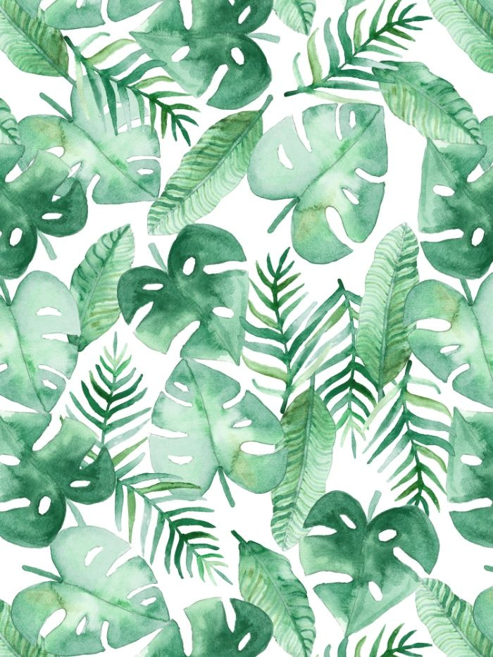Tropical Print Wallpaper Tropical Leaves Leaf Green - Tropical Green Leaf Background , HD Wallpaper & Backgrounds