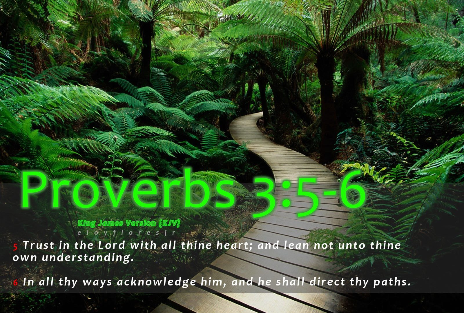 Bible Verses Wallpapers Free Download Nature 39854 Hd
