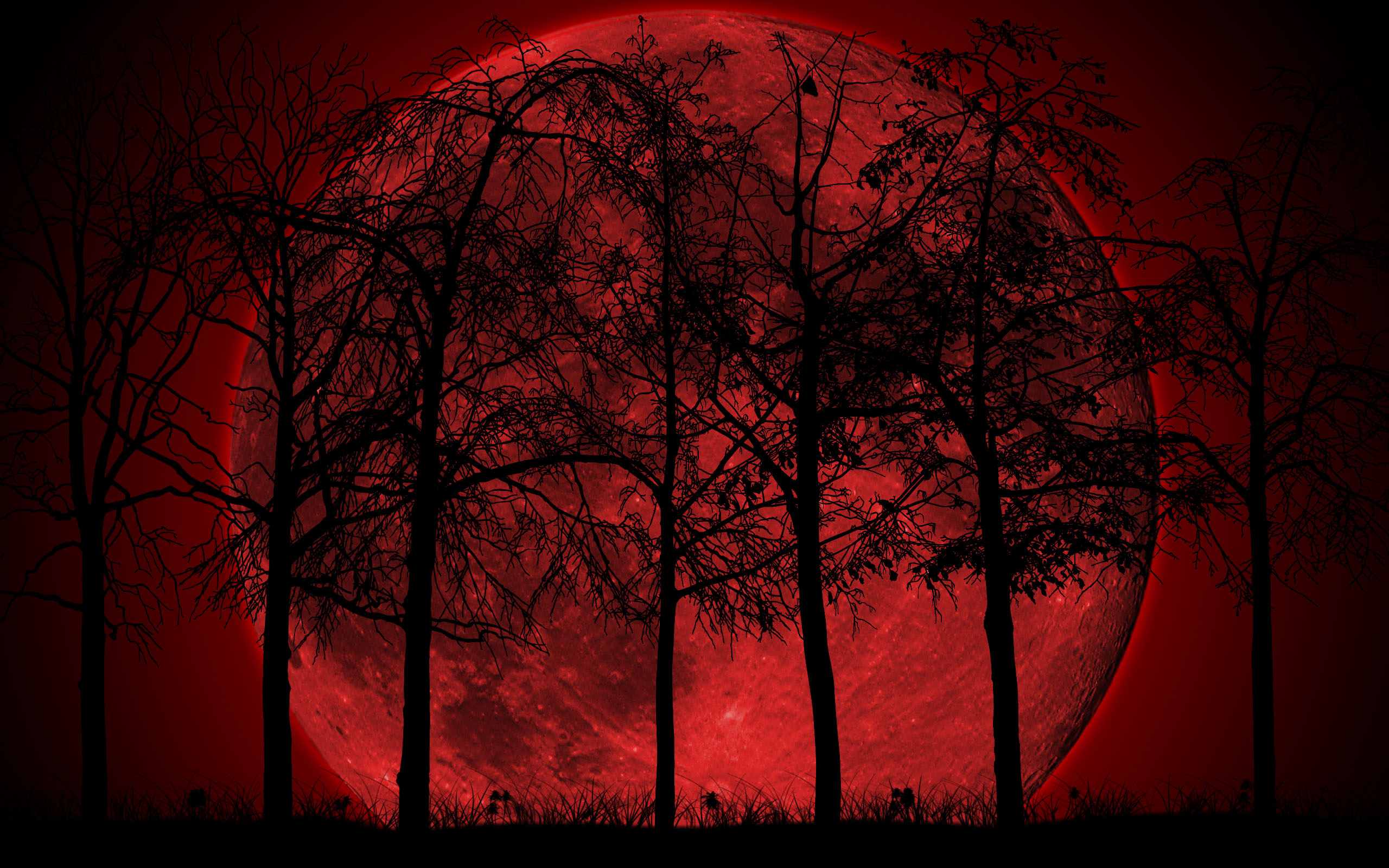 Dark Forest Wallpaper For Pc Pictures - Blood Moon In Forest , HD Wallpaper & Backgrounds