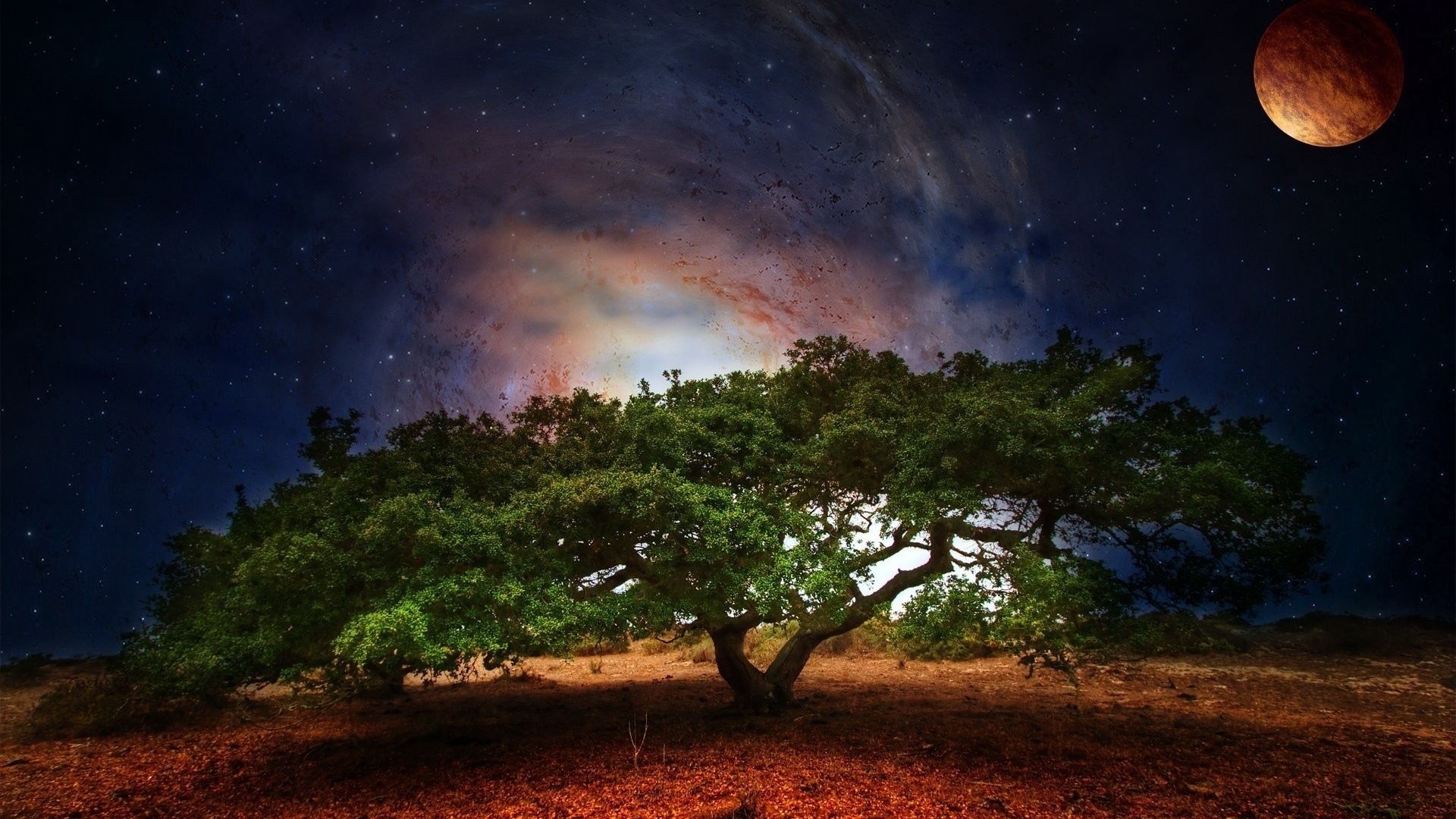 Wallpaper Planet, Green, Nature, Space, Leaves, Tree - Nature Wallpaper Hd Space , HD Wallpaper & Backgrounds