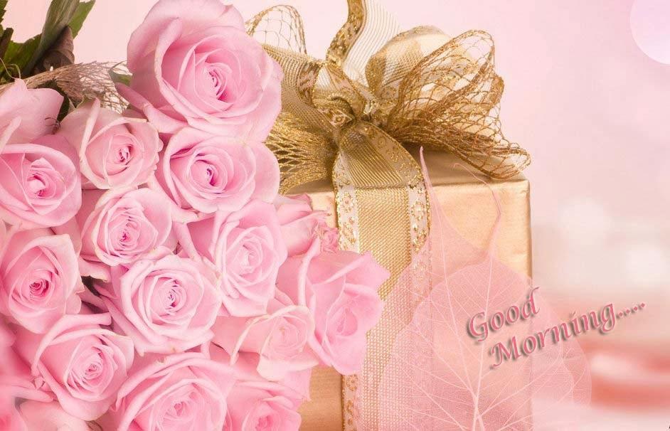 Good Morning Rose Pink Gift Celebration Wallpaper - Good Morning Beautiful Flower Beautiful , HD Wallpaper & Backgrounds