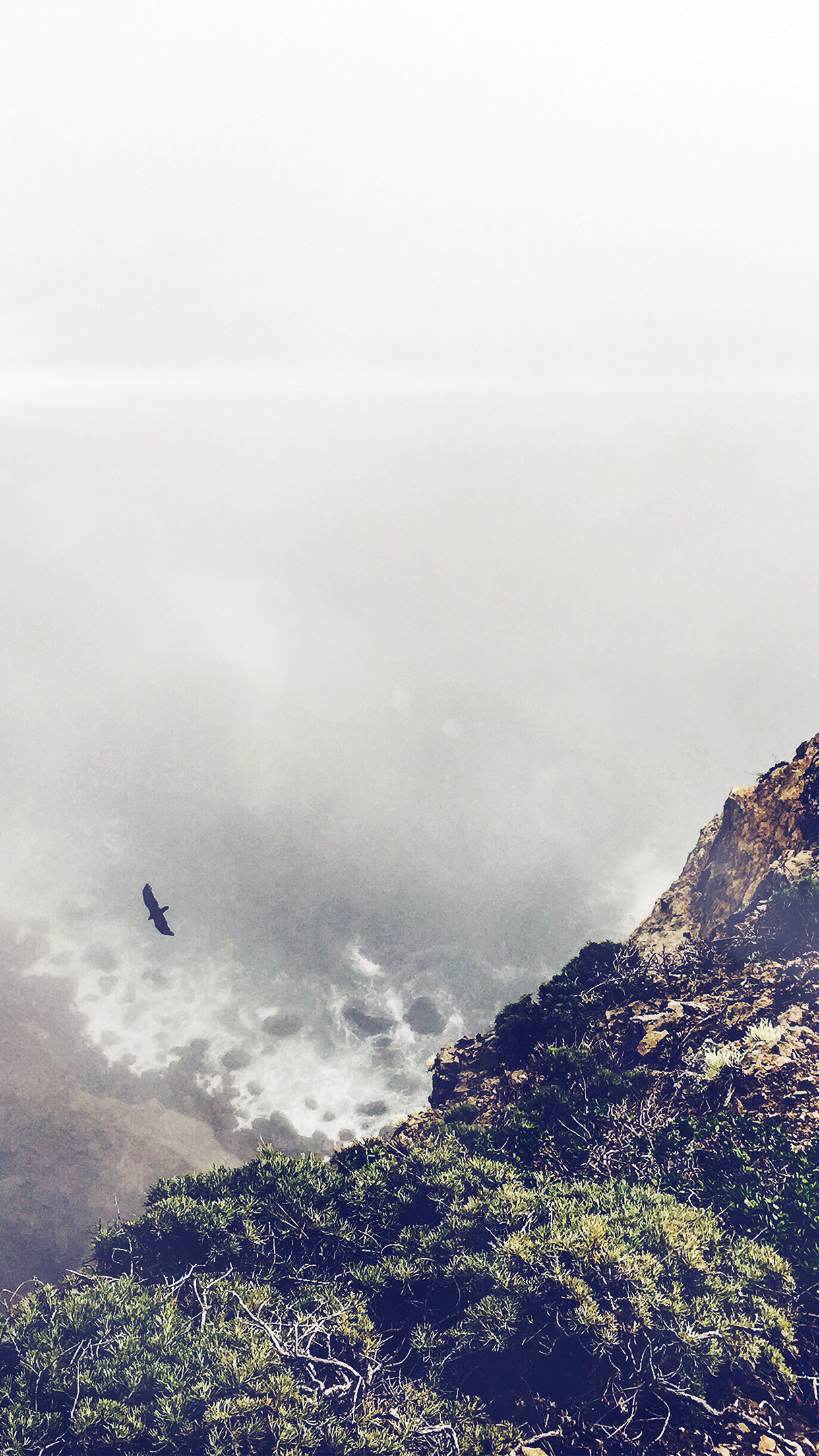 Mountain Bird Cliff Animal Fog Cloud Flare Android - Iphone 7 Plus Bright , HD Wallpaper & Backgrounds
