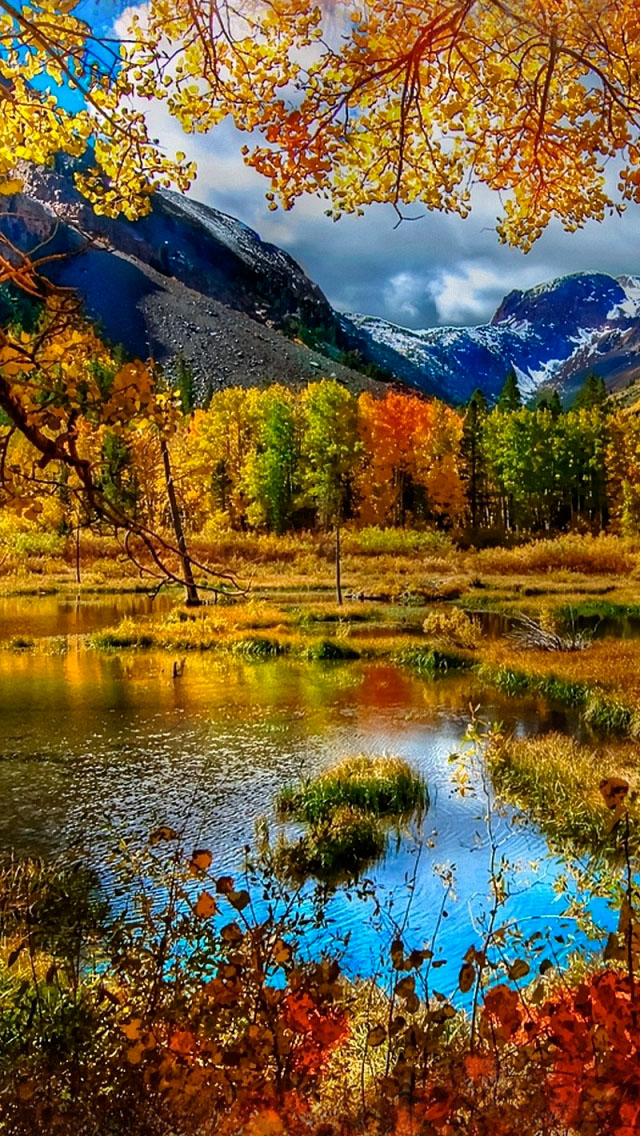 foto de Mountain Autumn Iphone Se Wallpaper - Iphone Wallpaper Fall Colors ...
