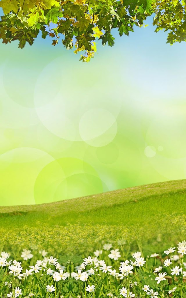 4mb download spring meadow live wallpaper from creative power point rumput bergoyang 3000516 hd wallpaper backgrounds download download spring meadow live wallpaper