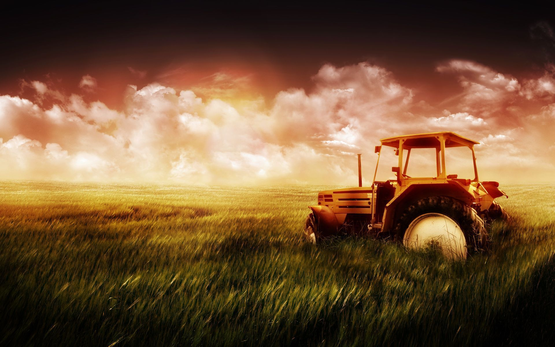 Old Tractor In Field , HD Wallpaper & Backgrounds