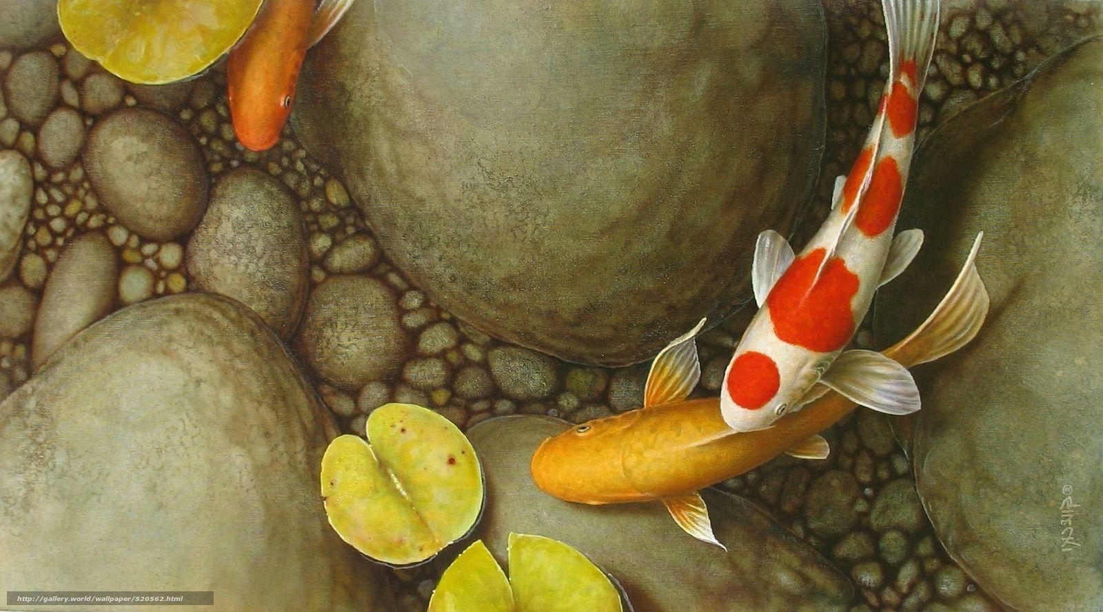 Koi Live Wallpaper - Koi Fish 3d Paintings , HD Wallpaper & Backgrounds