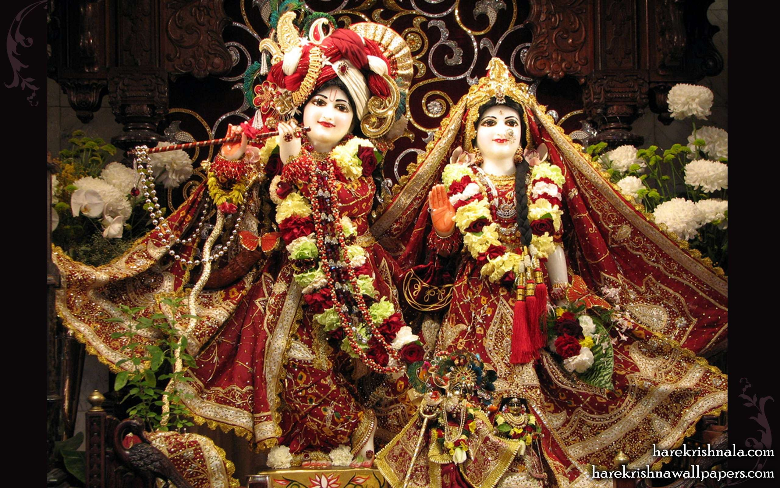 Wallpaper Hd Download Hare Krishna Iskcon Radha Krishna 3048377 Hd Wallpaper Backgrounds Download