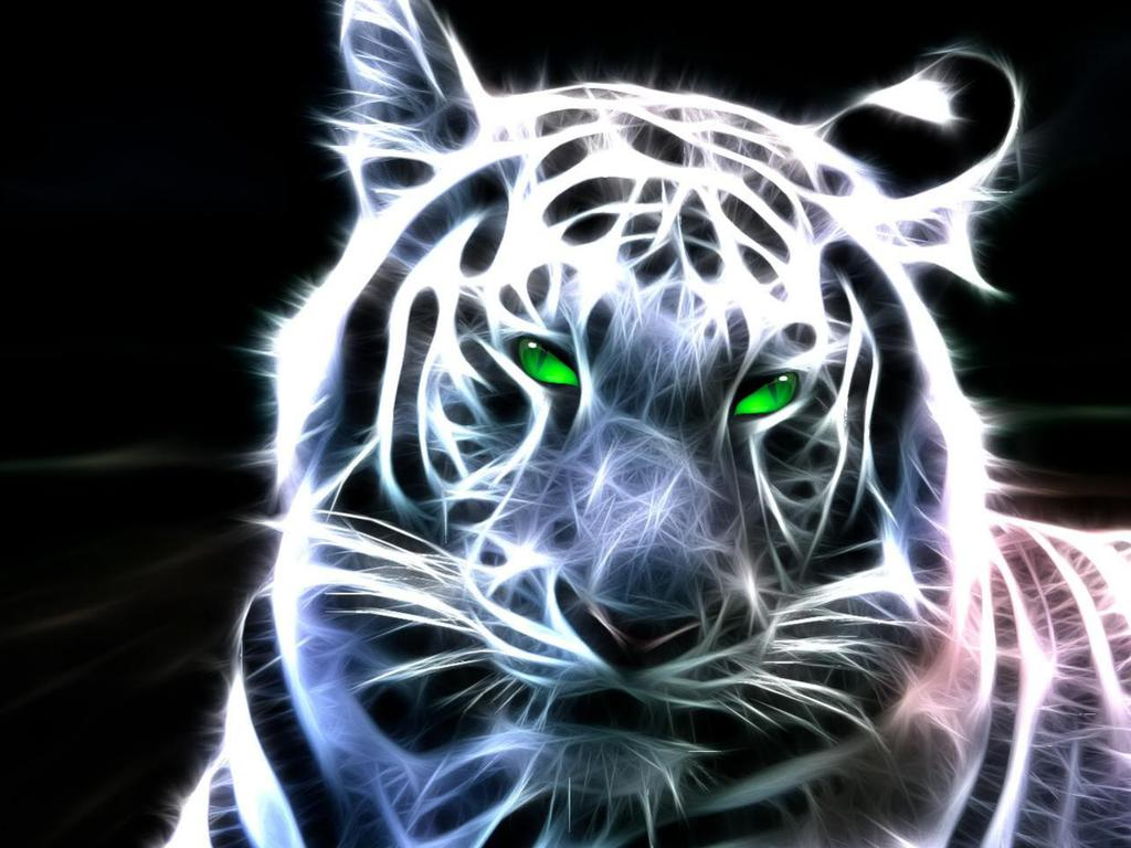 Tiger Wallpapers 3d Full Hd Snow, Lion - Tigers Wallpaper Full Hd , HD Wallpaper & Backgrounds