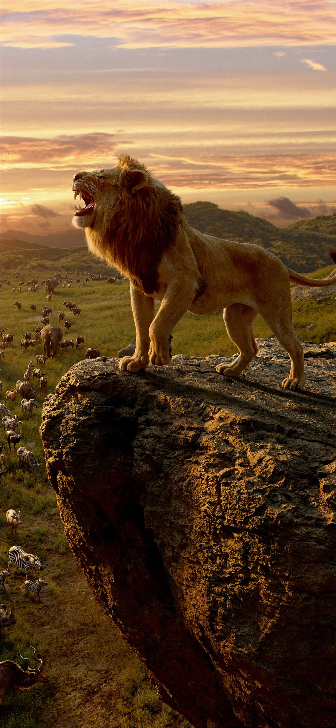 Lion King Wallpaper 4k , HD Wallpaper & Backgrounds