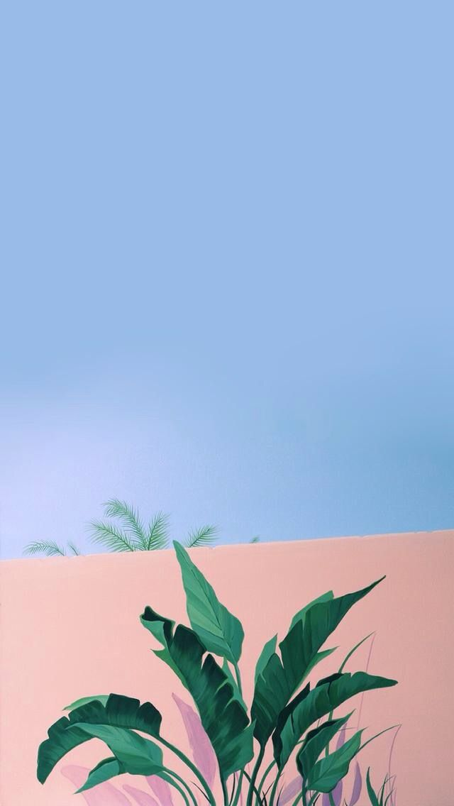 Blue, Sky, Leaf, Botany, Plant, Tree, Iphone Wallpaper - We Don T Talk Anymore And You Don T Seem To Care , HD Wallpaper & Backgrounds