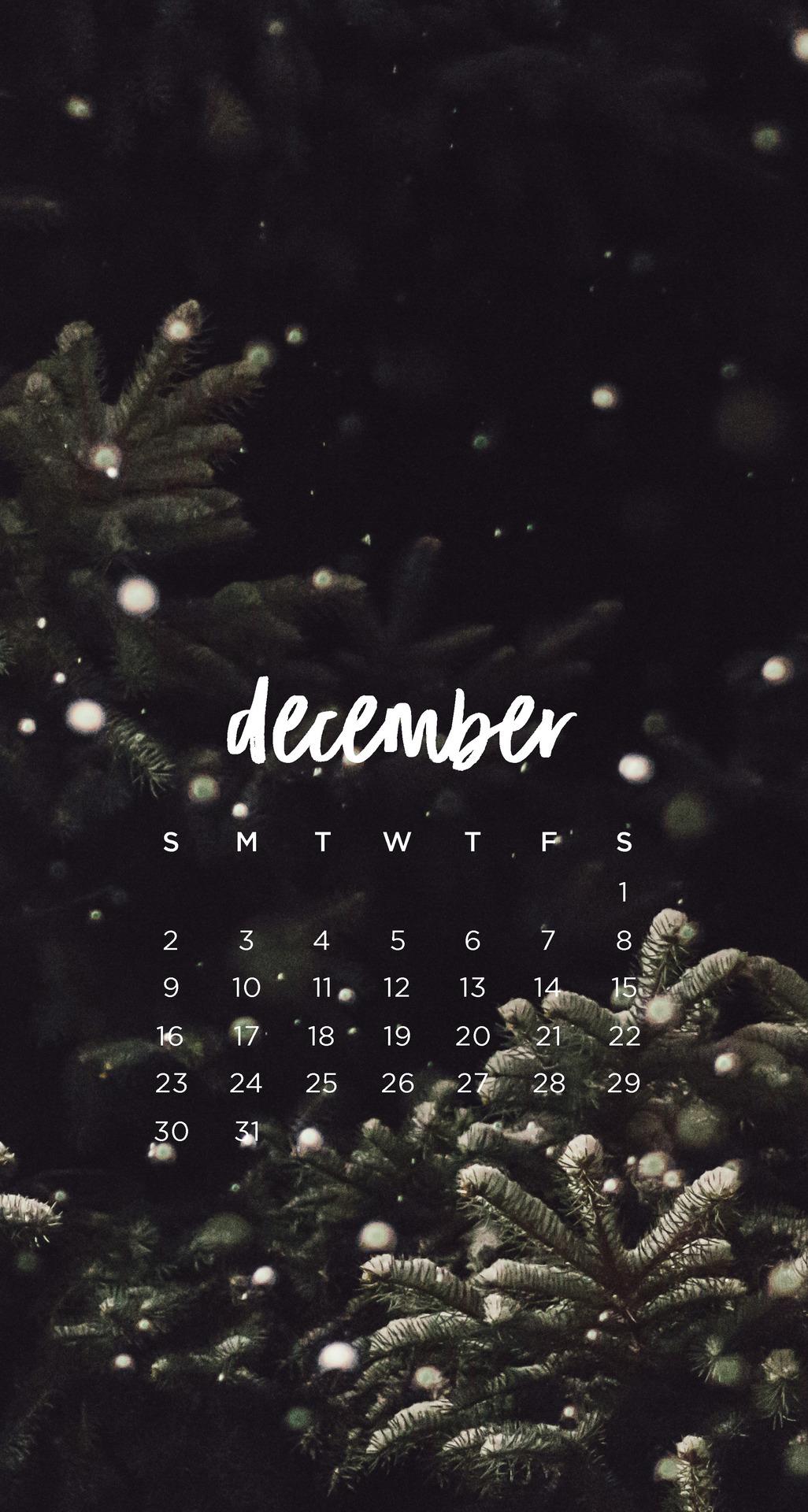 Emma Studies December , HD Wallpaper & Backgrounds
