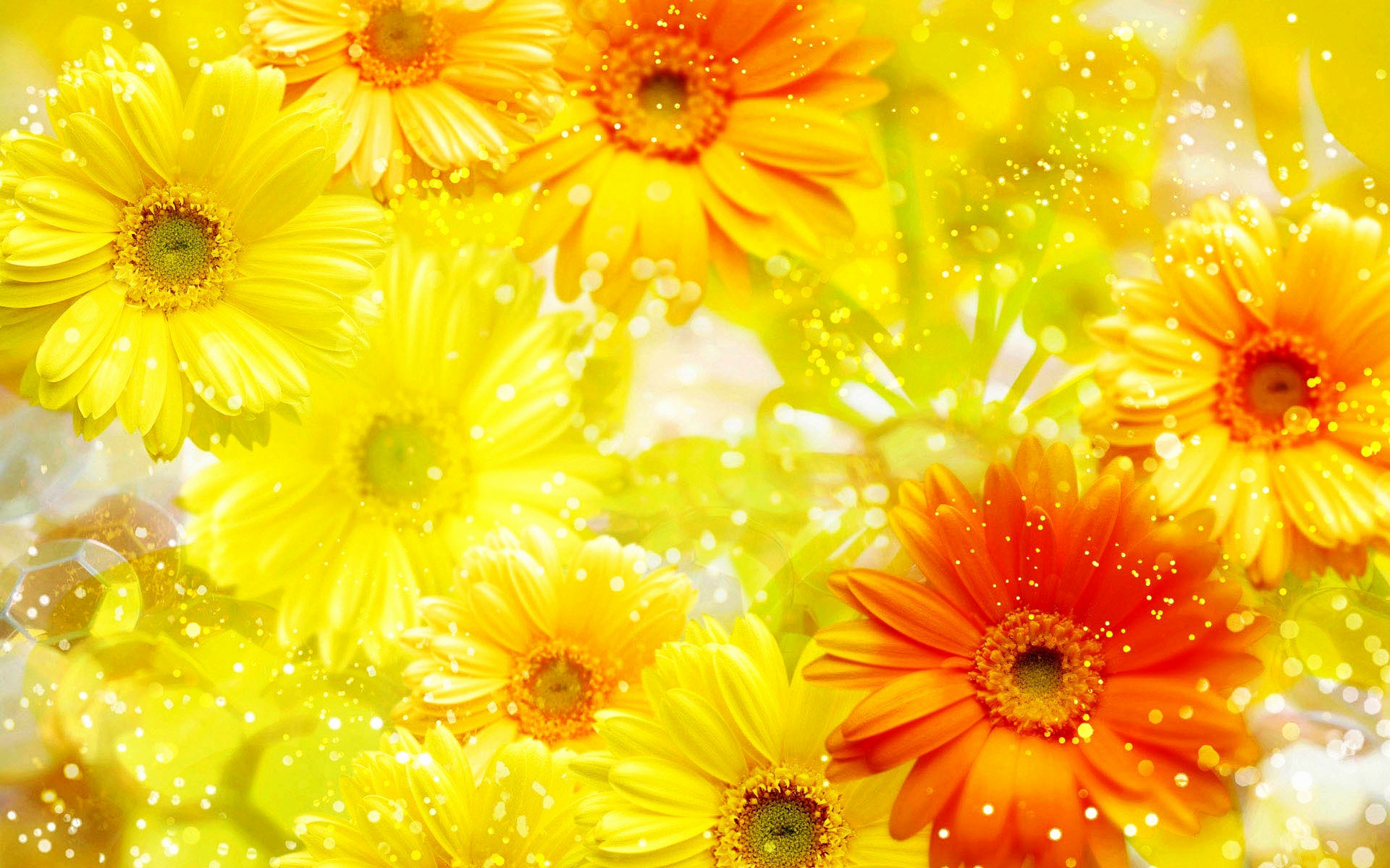 1920x1200 yellow flower wallpaper best of yellow flowers yellow and pink asthetic 3085209 hd wallpaper backgrounds download 1920x1200 yellow flower wallpaper best