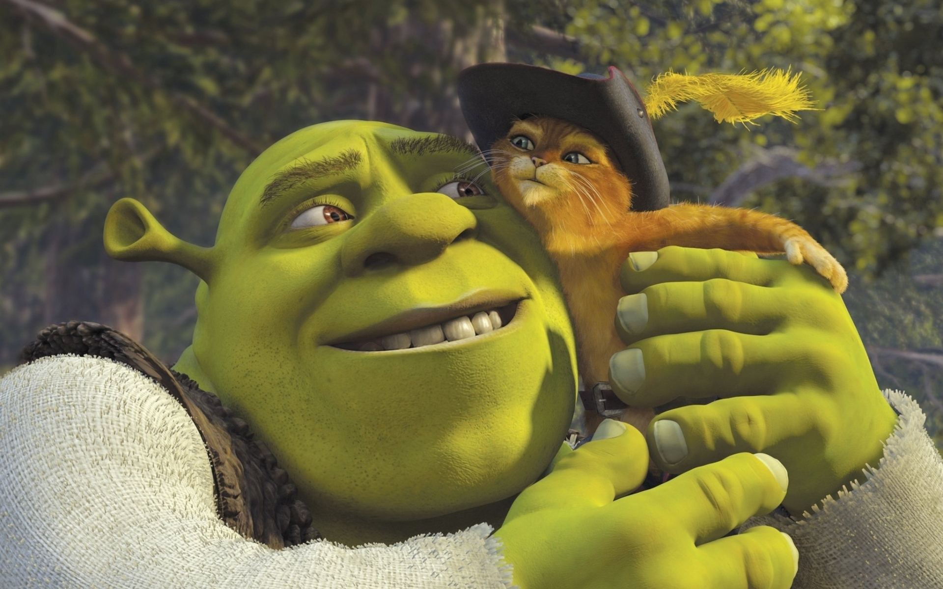 Shrek Movie Desktop Wallpaper Shrek 2 3087031 Hd Wallpaper Backgrounds Download
